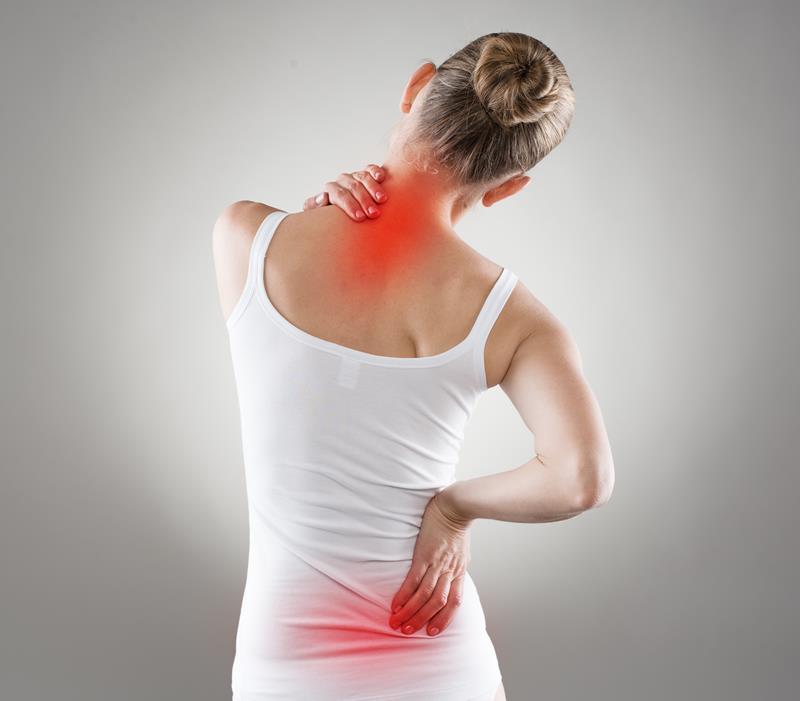 chiropractic services  Anoka, MN